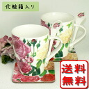Chock full of 6 (^-^) bone China white & pink mugs, set of 6 (with spoon coaster box set)