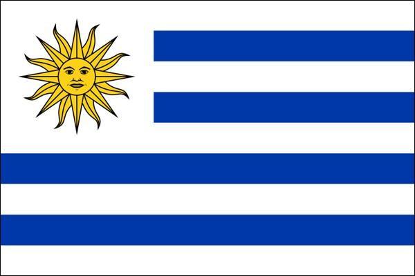 东欧共和国乌拉圭国旗 140 x 210 厘米 701190 取消, 回报和替换无法图片