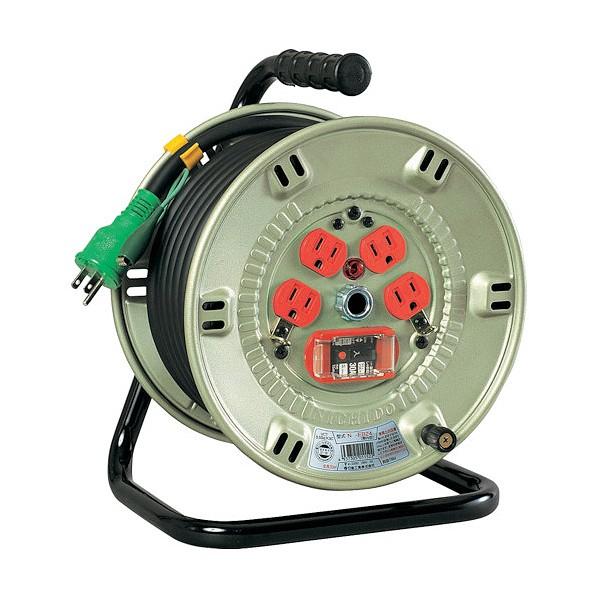 日動 100V過負荷漏電遮断器付 NP-EK24