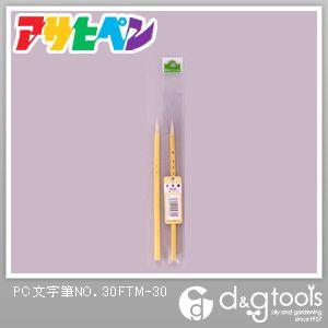 アサヒペン PC文字筆NO.30   FTM-30