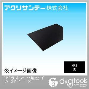 PPクラフトシート(発泡タイプ)(ポリプロピレン) 黒 450×900 2ミリ (HP-2 L 2)