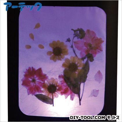 アーテック My ArtCollection 押し花ランプ   91002