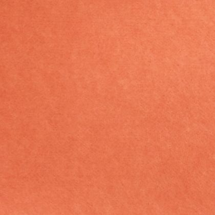 吸音パネル フェルメノン  約幅30×高さ30×厚さ0.9(cm) 253321