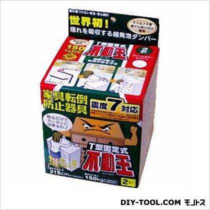 不動王 T型固定式   FFT-009