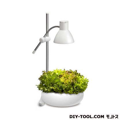 植物育成ライト  W220XH530XD220mm IK-S72GWH