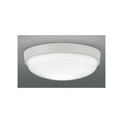 LED防雨防湿型CL (AU42223L)
