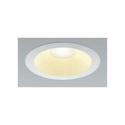 LED防雨防湿ダウン (AD42792L)