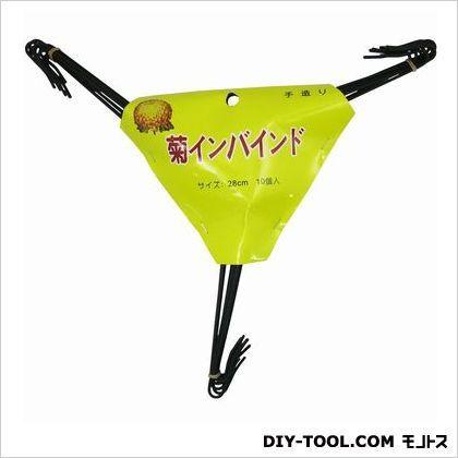 菊インバイド    10 本