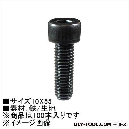 六角穴付ボルト  10×55 62169 100 本