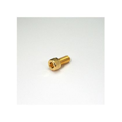 24Kメッキステンレスキャップボルト M10x20 (810660-020)