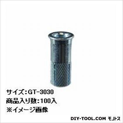 シーティーアンカーGTタイプ   GT-3030 100 本