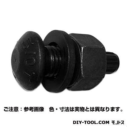 トルシアボルト(S10T) 20X65 (B000310000) 1本入
