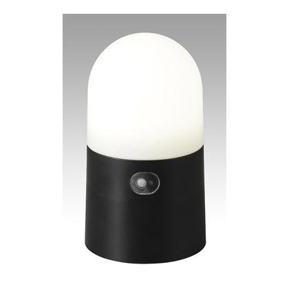 Verde Garden LEDガーデンセンサーライト  H215×W160×D130(mm)