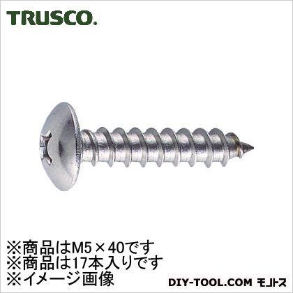 ステンレストラス頭タッピングねじ M5.0×40 (B430540)