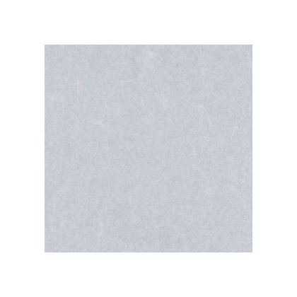 ワーロンシート(雲竜) スタンダードタイプ 強化障子紙  0.2×930×2150mm No.2
