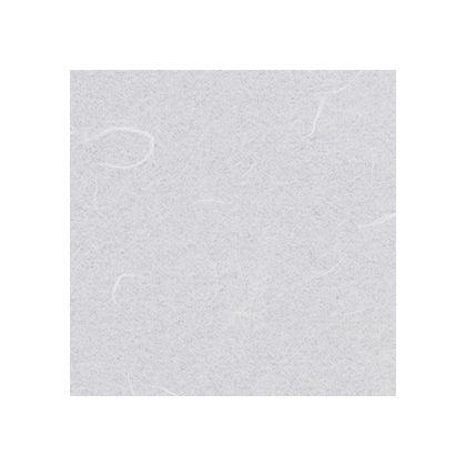 ワーロンシート(薄雲竜) スタンダードタイプ 強化障子紙 0.2×930×1850mm (No.2-15G)