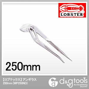 アンギラス  250mm WP250ND