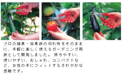 アルス 替刃式ガーデニング鋏 (SE-45)