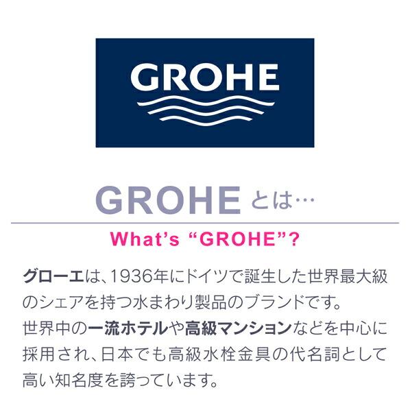 GAONA ヤータモン・カーチス シャワーヘッドとホースのセット グローエ (GA-FH007)