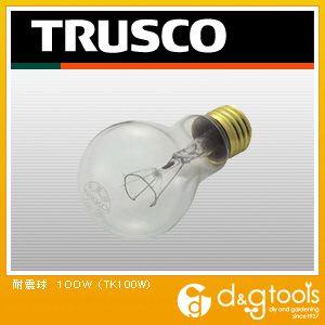 耐震球 100W (TK100W)