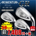 * Evolve and classic irons steel shaft (option #5/AW/SW/) MOMENTUM-GR iron yesteryear, back: