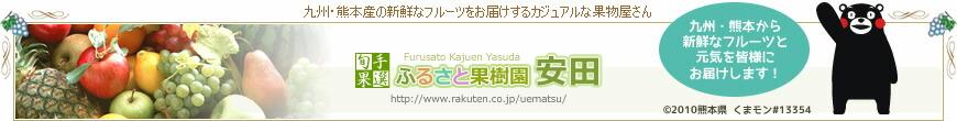 熊本のフルーツふるさと果樹園安田:熊本特産のフルーツを古里の香りを添えてお届けします。うまかばい!