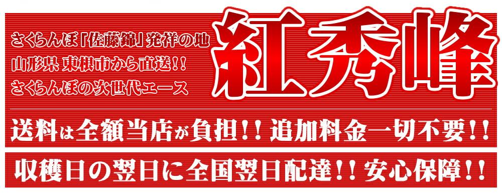さくらんぼ 紅秀峰