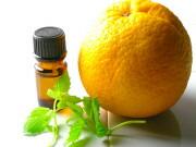 オレンジ。ミントE