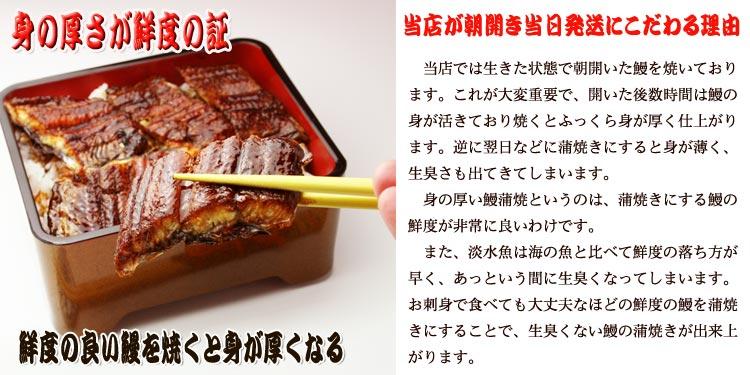 愛知県産鰻蒲焼