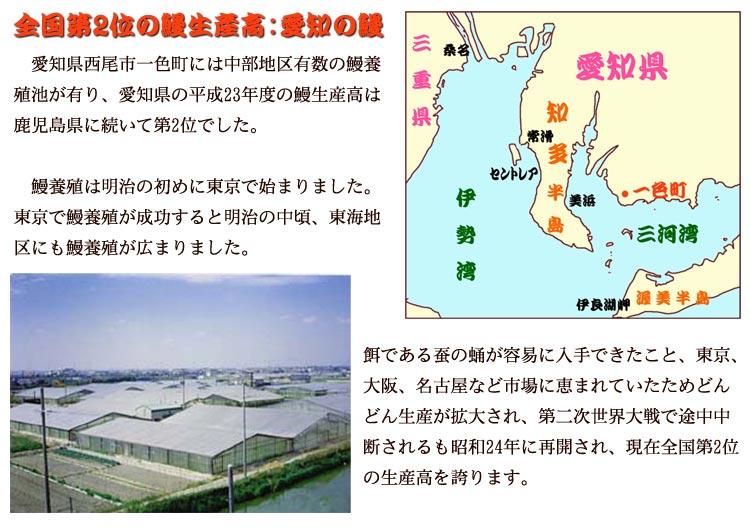 鰻生産高全国第2位愛知県 西尾市一色町