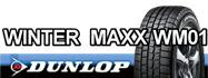 WINTER MAXX WM01