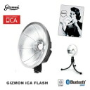 GIZMON (gizmon) iCA FLASH LED lights GIZ-ICA-FL!