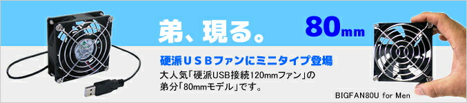 BIG-FAN USB8cm�ե��� BIGFAN80U for Men