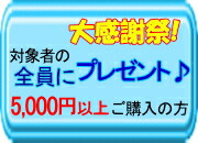 全員にプレゼント『¥5,000以上お買上げの方に選べるプレゼント』