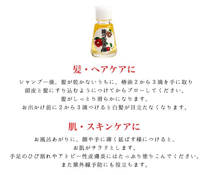 気仙沼大島椿