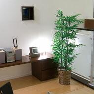 光触媒 人工観葉植物 光の楽園 竹タイプ