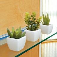 光触媒 人工観葉植物 光の楽園 テーブルタイプ