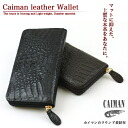 """Caiman leather round long wallet"" round ladies mens wallet purse wallet unisex leather crocodile [] [zu]"