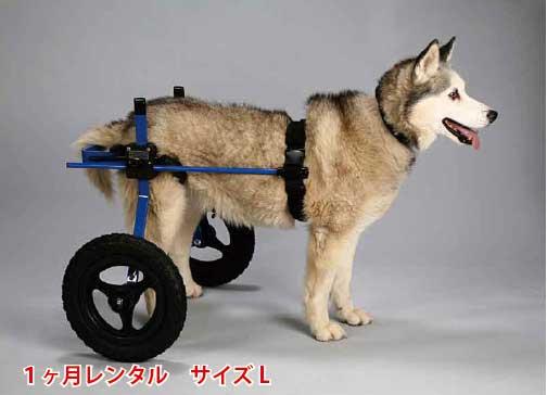 犬用車椅子レンタルL