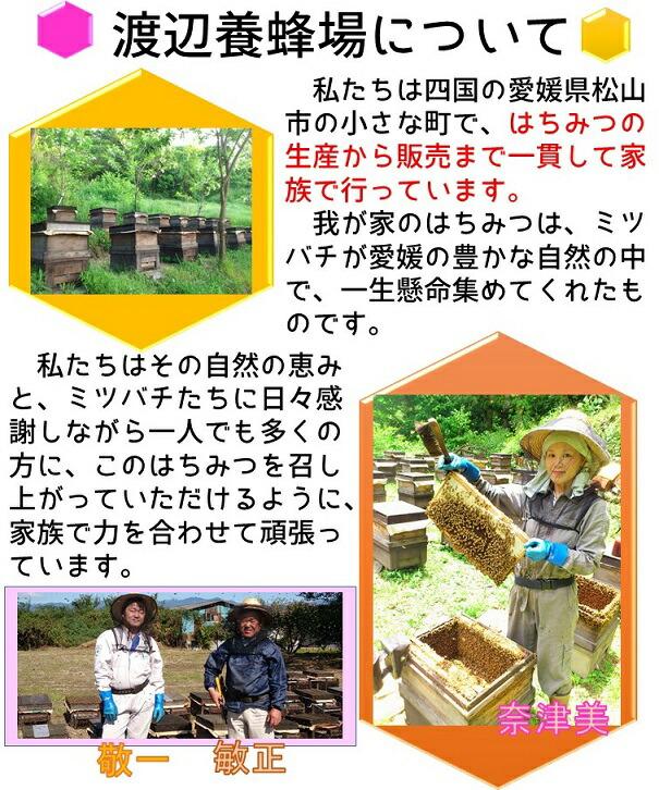 渡辺養蜂場について