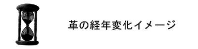 Ryu経年変化イメージ