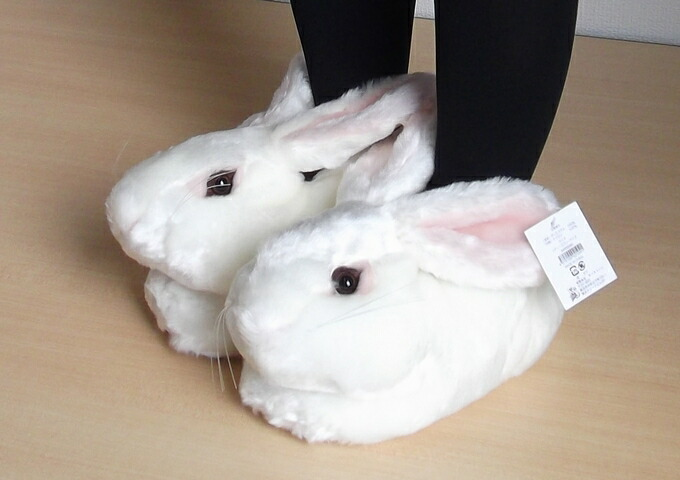 Rabbit rs model02