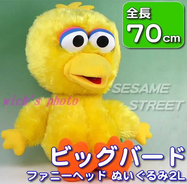 bigbird70cm