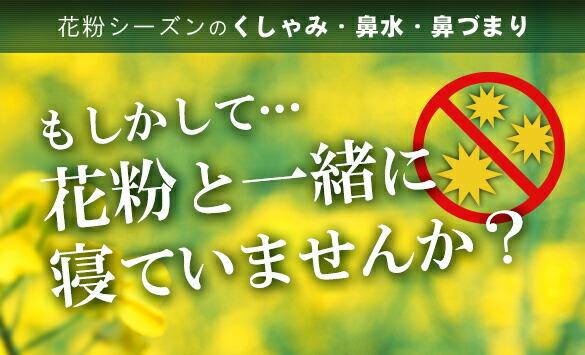 花粉シーズンのくしゃみ・鼻みず・鼻づまり。もしかして花粉と一緒に寝ていませんか?