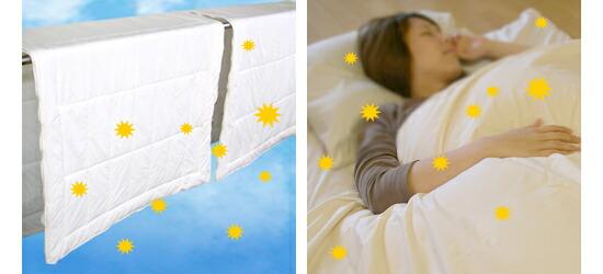 寝室中に花粉がとびまわります。