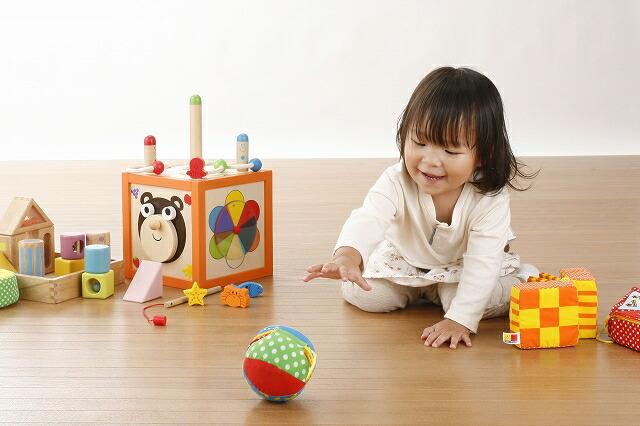 エド・インターの木のおもちゃ 木製玩具