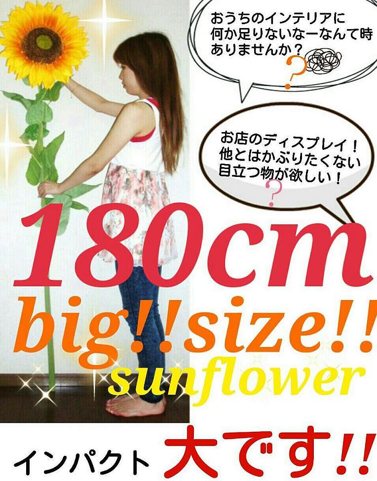 【ヒマワリ造花】【人気のため再入荷】【特大】【大きい】【毎年大人気】【180cm】【黄色】【造花】【元気が出る】【笑顔のようなひまわり】【ディスプレイ】【インテリア】【sunflower】【観葉植物】