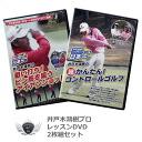골프 레슨 DVD 우물 나무 홍 삼수 프로 2 개 세트