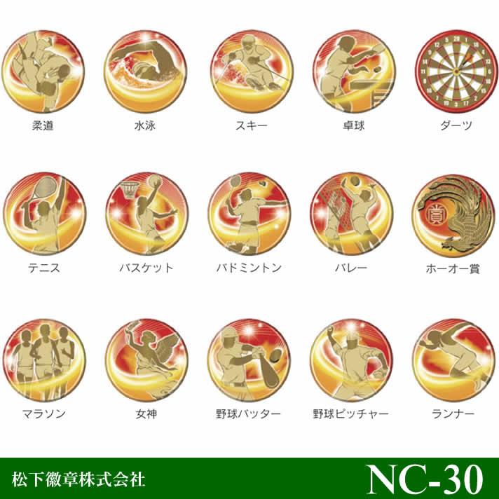 【NC-30】ネームカード デジカラータッグ【松下徽章】