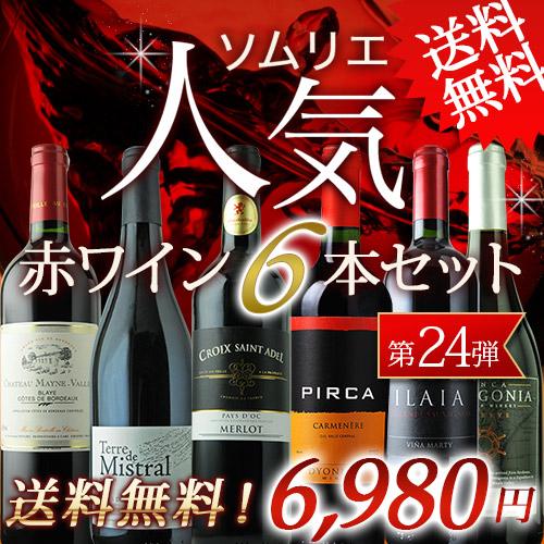 ソムリエ人気赤ワイン6本セット